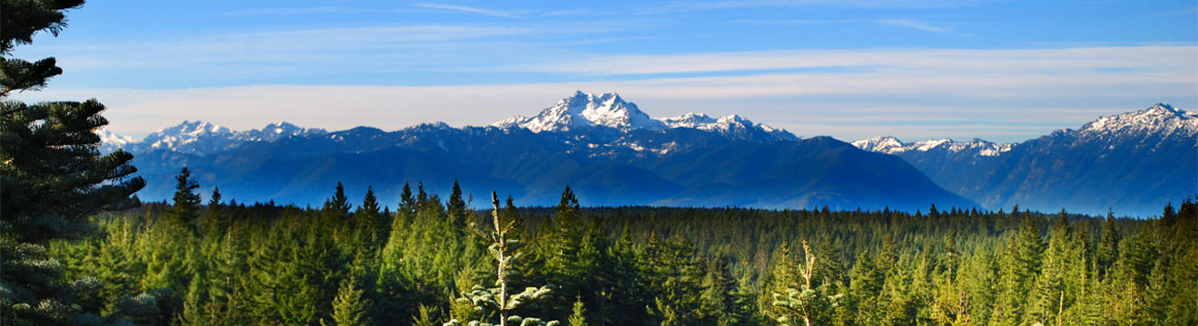 Mountains_1320x360.jpg