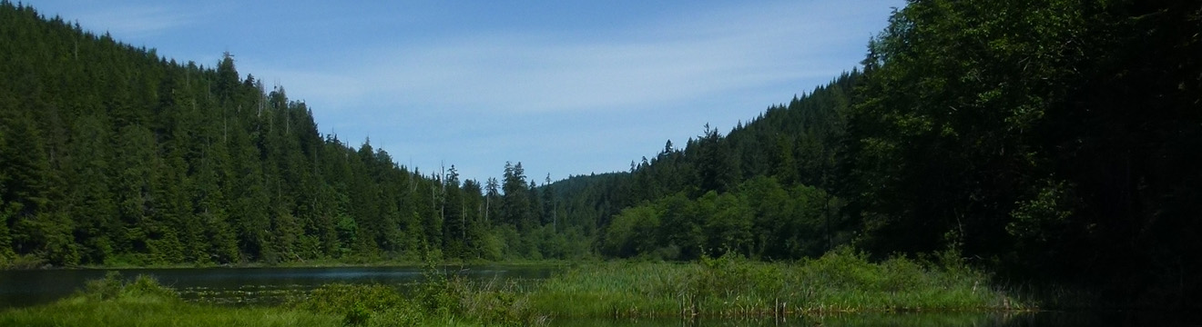 PNW_Web_Header_Jim_Creek_Recreation_Area_05.jpg